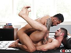 But Dato has more on his mind so he hops up and aims his thick uncock cock at Boomer`s spit-lubed hole and drives it home with one solid pump.